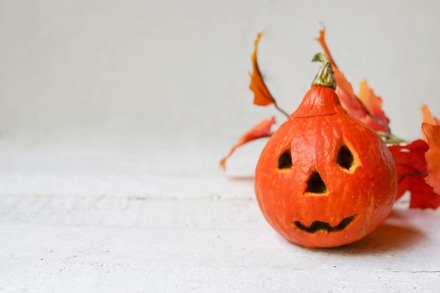 Zucca di halloween e foglie di autunno su fondo bianco
