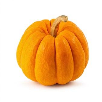 Zucca miniatura arancio isolata su fondo bianco