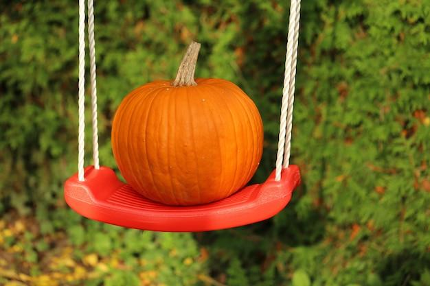Zucca su un'altalena in giardino. giorno del ringraziamento. halloween.