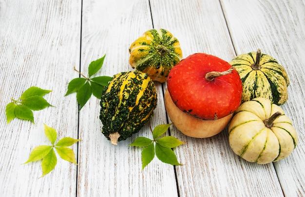 Zucche con foglie d'autunno