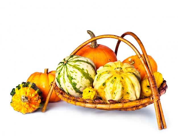 Zucche di autunno in un cestino su bianco