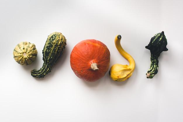 Zucche di autunno su un piatto su una priorità bassa bianca