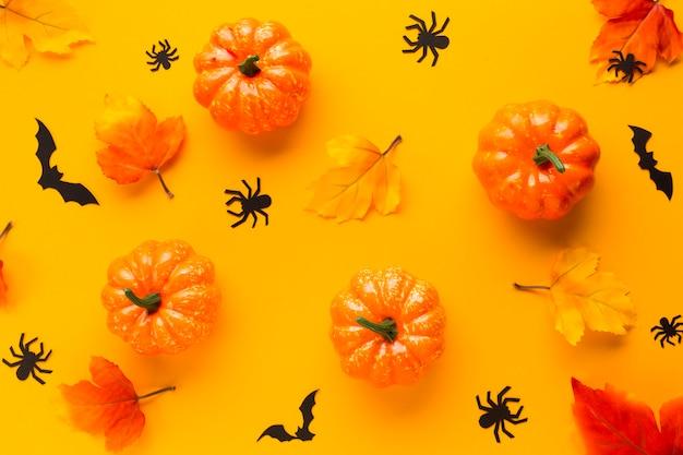Zucche di halloween con foglie e ragni