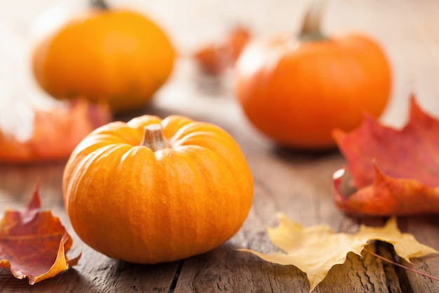 Zucche di halloween di autunno su fondo di legno