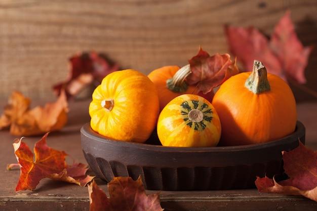 Zucche e foglie di autunno decorative per halloween