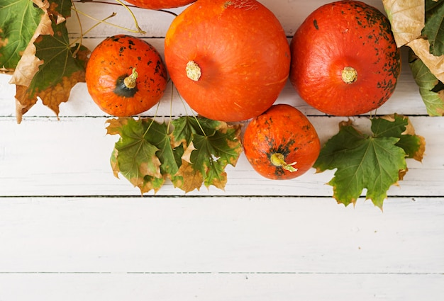 Zucche e foglie di autunno su una tavola di legno bianca. tavolo del ringraziamento halloween.