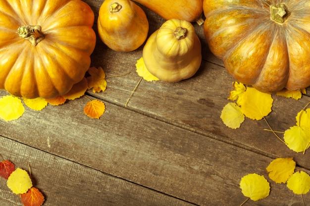 Zucche e foglie gialle sui bordi di legno