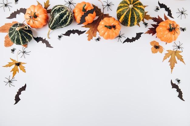 Zucche, foglia secca, ragni e pipistrelli su bianco