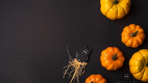 Zucche fresche arancioni e gatto giocattolo