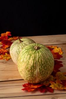 Zucche verdi con foglie d'autunno