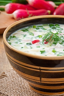 Zuppa fredda di kefir di verdure con uova e verdure