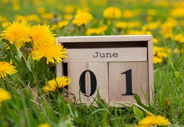 01 de junho, organizador do calendário, o primeiro dia de verão na grama verde em dente-de-leão amarelo