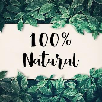 100 natural com folha verde. ambiente ecológico amigável, conceitos