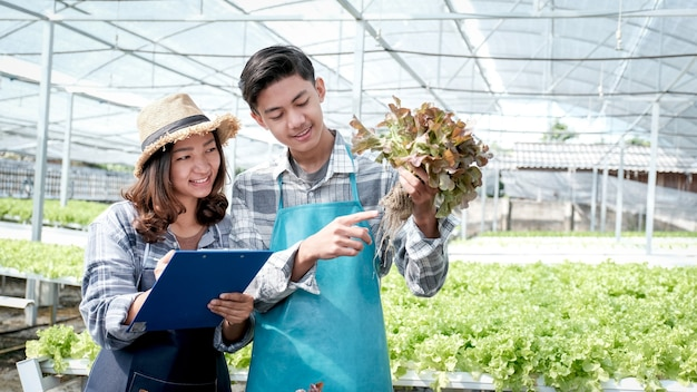 2 agricultor inspeciona a qualidade da salada de vegetais orgânicos e da alface da fazenda hidropônica e faz anotações na prancheta para dar aos clientes o melhor produto.