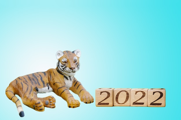 2022 é o ano do tigre. um tigre de lembrança e os números 2022 em blocos de madeira estão ao lado dele. fundo azul. o tigre é o símbolo do ano 2022.