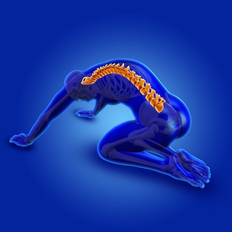3d azul figura masculina médica com coluna destacada
