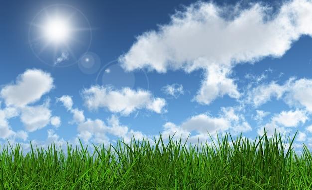 3d rendem de grama verde exuberante com um céu azul ensolarado