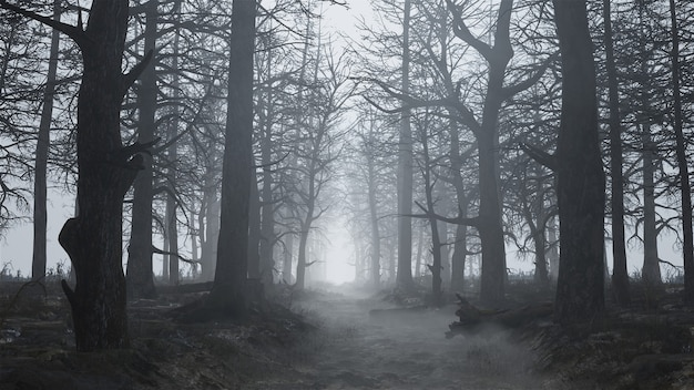 3d render de uma floresta assustadora e vazia no meio do nevoeiro