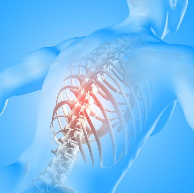 3d render de uma imagem médica de uma figura masculina com a coluna vertebral destacada