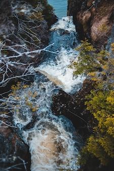 A água cai no meio de árvores amarelas e verdes