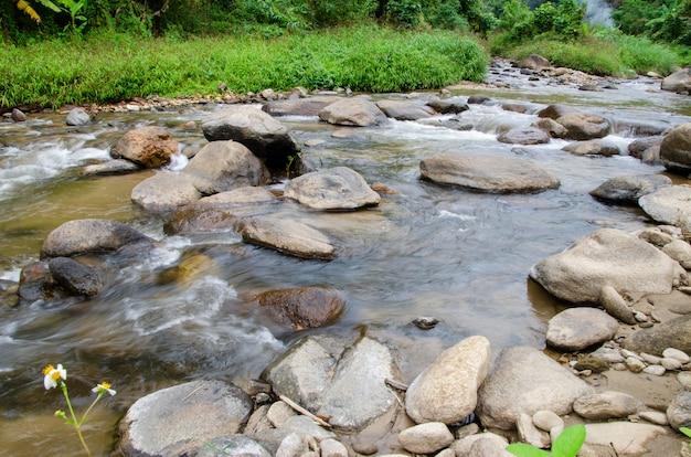 A água flui através das rochas no parque nacional com fundo desfocado padrão.