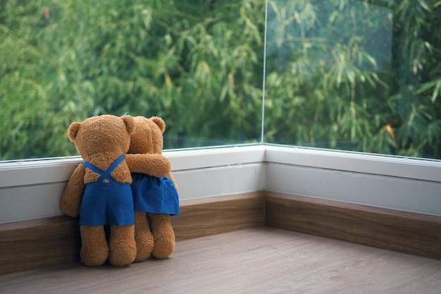 A amizade e relacionamento de dois ursos de pelúcia estão se abraçando, olhando para a visão do bambu na janela,
