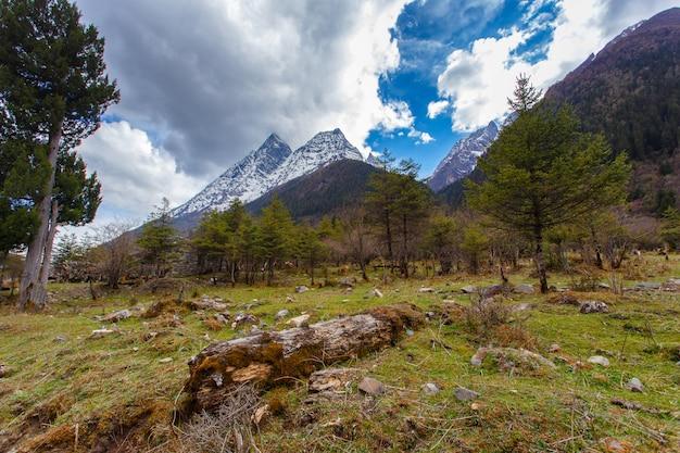 A área cénica da montanha de quatro donzelas (mt. siguniangshan) é um parque selvagem intacto