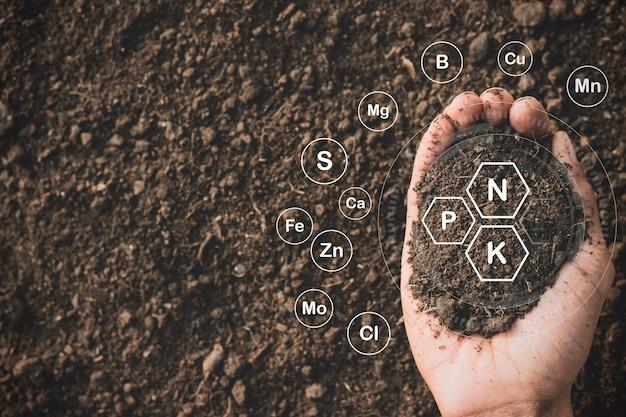 A argila fértil é adequada para o plantio de árvores.