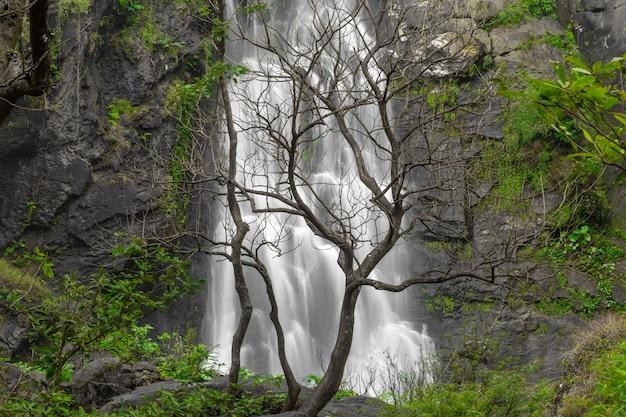 A bela cachoeira na floresta profunda em khlong lan national park