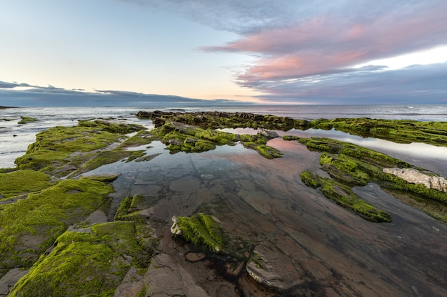 A beleza das praias do norte da espanha com o musgo nas rochas