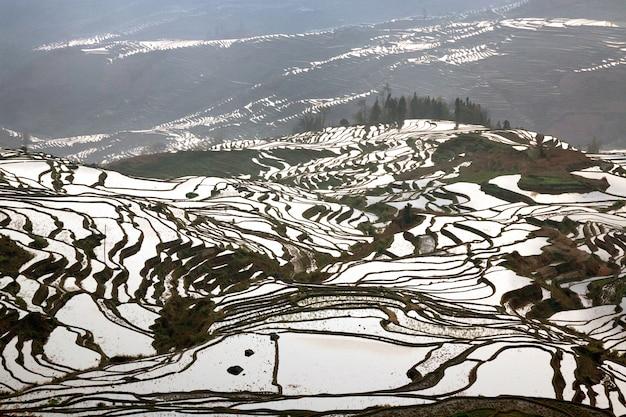 A beleza dos terraços de arroz yuan yang, china.
