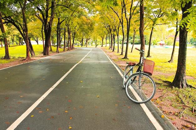 A bicicleta no caminho do parque