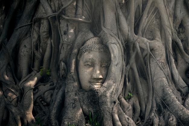 A cabeça da antiga estátua de buda na tailândia