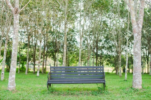 A cadeira ou banco é colocado no jardim.