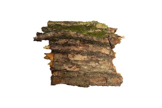 A casca da árvore é isolada em um fundo branco. textura de madeira