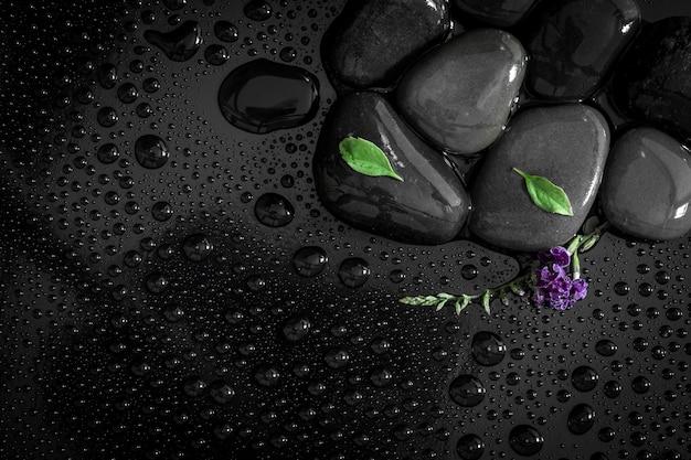 A chuva de água cai com pedras em preto brilhante e pequena folha verde fresca