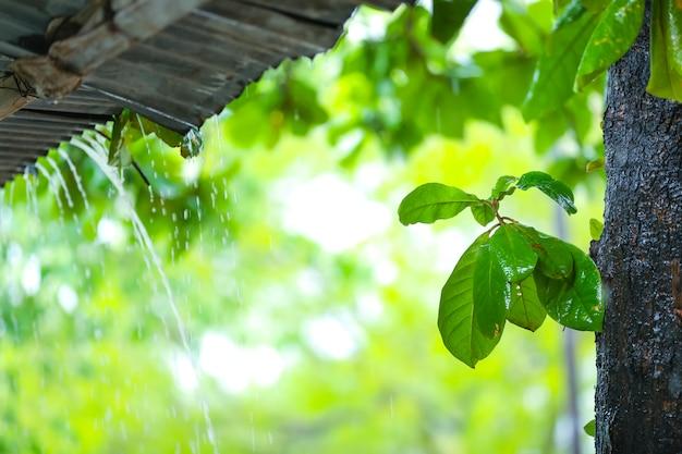 A chuva flui de um telhado para baixo