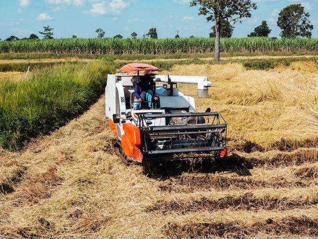 A colheitadeira está fazendo trabalhos agrícolas nos campos.