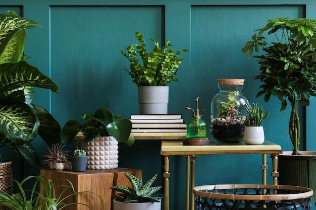 A composição moderna do jardim doméstico encheu um monte de belas plantas, cactos, suculentas, plantas de ar em vasos de design diferente. interior elegante de botânica. painéis de parede verdes. conceito de jardinagem doméstica