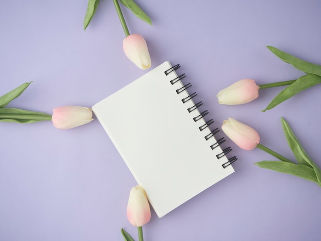 A configuração lisa de tulipas cor-de-rosa floresce no fundo roxo com caderno vazio.