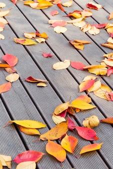 A cor do inclinação do outono sae no assoalho de madeira. imagem com visão vertical.