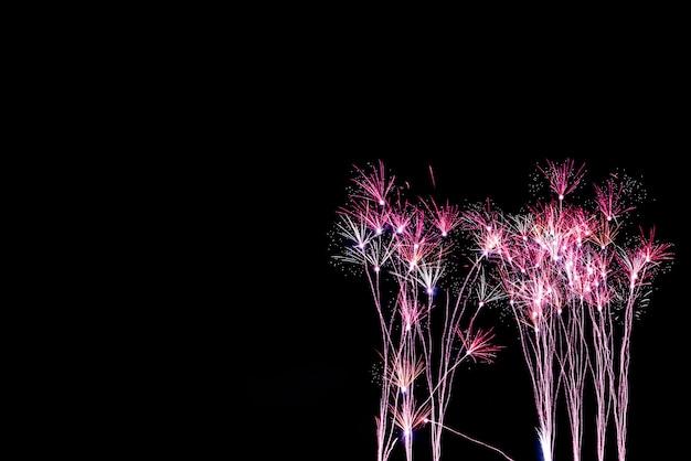 A cor e linda dos fogos de artifício parece uma flor de grama, no céu negro à noite, para comemorar as festas de fim de ano, conceito de feliz ano novo.