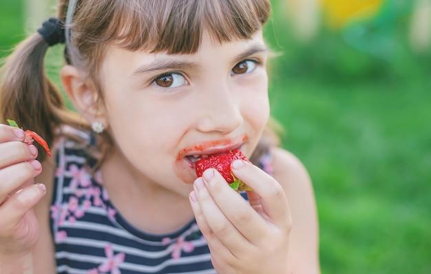 A criança come morangos no verão