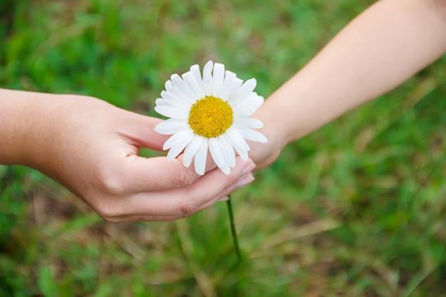 A criança dá a flor para sua mãe. foco seletivo.