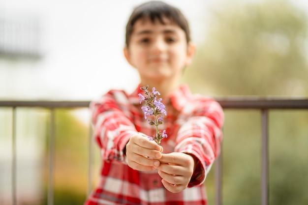 A criança oferece um ramo perfumado de sálvia em flor como presente