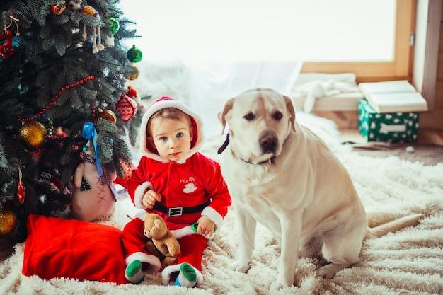 A criança pequena e cachorro labrador sentado perto da árvore de natal