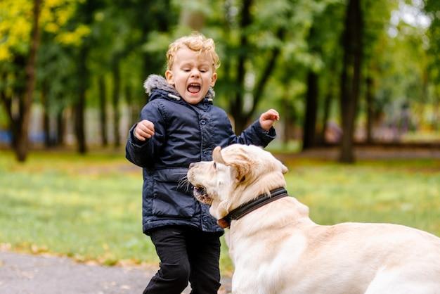 A criança tem medo do cachorro