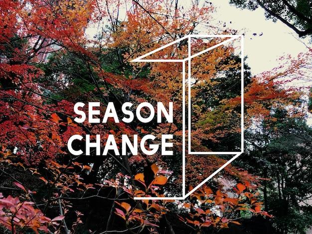 A estação do outono muda a natureza e as belas paisagens