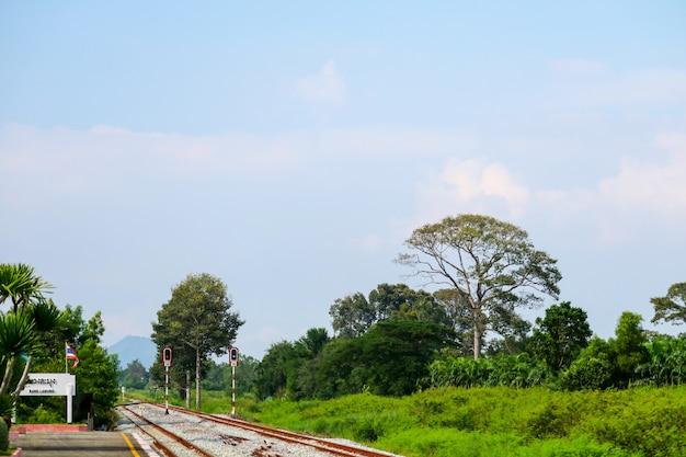 A estação ferroviária rural está cheia de árvores gramíneas