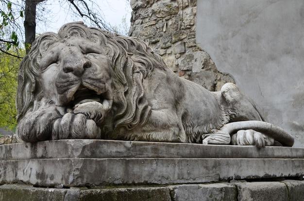 A estátua do leão de pedra dormindo lviv, ucrânia